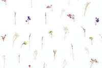 Background made from flower pattern