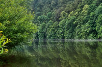 Landschaft am Neckar