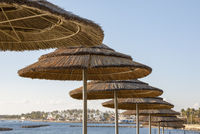 Sonnenschirme am Strand
