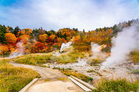 View of Fuke no Yu hot spring in autumn season
