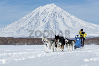 Kamchatka Sled Dog Racing Beringia, Russian Cup of Sled Dog Racing (snow disciplines)