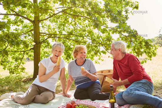 Lachende Gruppe Senioren beim Picknick im Park