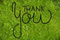 Green Grass Lawn Or Meadow, Calligraphy Thank You