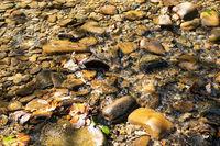 Flussbett im Allgaeu. Deutschland