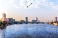 The Nile in the downtown of Cairo, Egypt, sunrise view