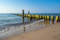 Buhnen an der Küste der Ostsee bei Graal Müritz