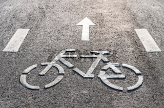 Bicycle symbol on a bike lane with directional arrow