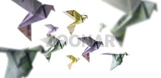 A flock of birds from Euro banknotes fly