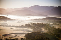 Yarra Valley Fog at Sunrise