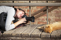 The photographer takes pictures of a ginger sleeping cat. Animal photographer.