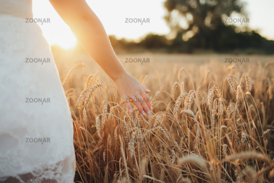 Girl in wheat field, girl's hand and wheat spikelet, sunset on field