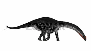 Apatosaurus dinosaur drinking or eating - 3D render