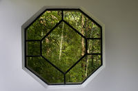 A chinese style window in garden with trees and plants