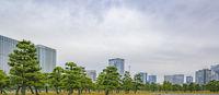 Imperial Garden Exterior Park, Tokyo, Japan