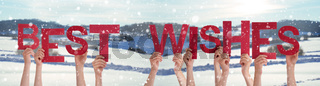 People Hands Holding Word Best Wishes, Snowy Winter Background