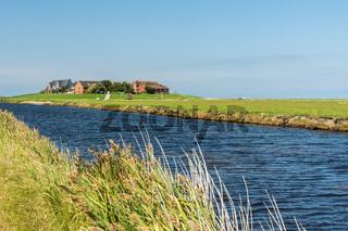 Warft mit Nordsee-Pril im Vordergrund auf der Hallig Hooge Schleswig-Holstein, Deutschland