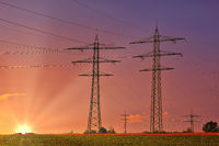 Hochspannungsmasten auf einem Feld mit untergehender Sonne