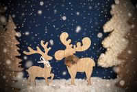 Moose Couple In Love, Christmas Tree, Snow, Snowflakes