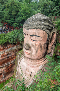 Majestic Giant Leshan Buddha head, face and torso