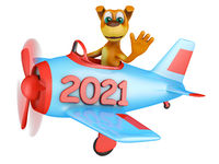 Dog in airplane 2021