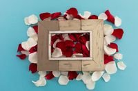 Wooden frame over white and red rose petals on blue background