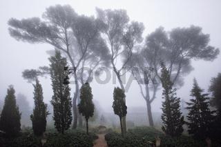 Klostergarten Randa de Cura, Mallorca, Spain