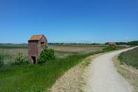 Deich, Insel Fehmarn