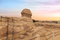 The Great Sphinx and the buildings of Giza, Cairo, Egypt