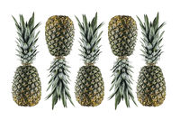 5 ripe pineapples lined up in a row isolated on white background. Creative pattern flatlay. Healthy vegetarian fat burning food