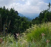 Summer mountain landscape, Durmitor, Montenegro