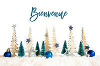 Christmas Tree, Snow, Blue Star, Ball, Bienvenue Means Welcome, White Background