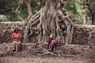 Fasil Ides Bath, kingdom poo, Ethiopia