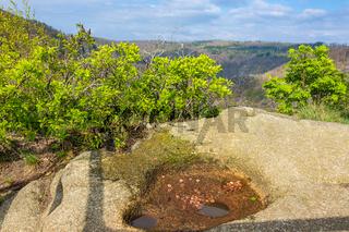 Die Roßtrappe mit Bäumen und Felsen im Harz
