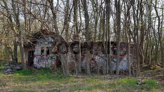 Ruine auf einem ehemaligen Güterbahnhof, von Bäumen umwachsen