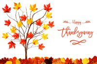 Tree With Colorful Leaf Decoration, English Calligraphy Happy Thanksgiving