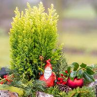 Weihnachtlich dekorierte kleine rot weiße Nikolaus Figur hält einen Stern in der Hand