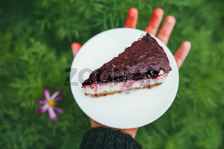 delicious Party cherry cake slice on the plate in male's hand. First person point of view POV over defocused garden background