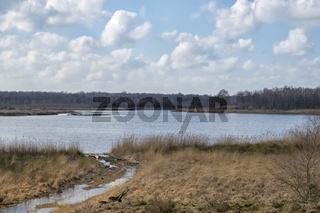 Naturschutzgebiet Zwillbrocker Venn