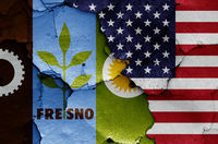 flags of Fresno and USA painted on cracked wall