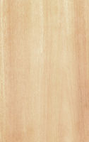 Clean pine wood texture background