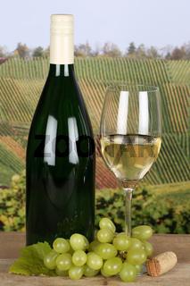 Weißwein in Weinflasche in Weinbergen