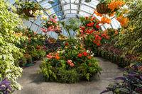 Wonderful greenhouse