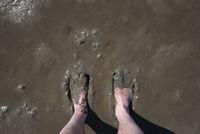 Füße nehmen Schlammbad im Wattenmeer