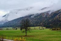 Cloudy and foggy autumn pre alps mountain countryside