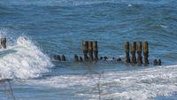 Verwitterte Buhnen in der Ostsee bei Graal Müritz