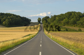 Country road with grain fields in summer