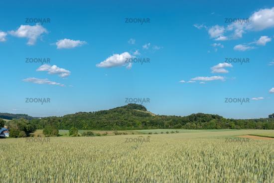 Landschaft mit Getreidefeld bei Maulbronn