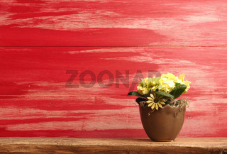 Yellow flowers on a red wooden background
