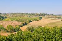 Autumn countryside - Volterra