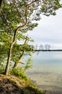 Stechlinsee, Brandenburg, Deutschland, Lake Stechlin, Brandenburg, Germany